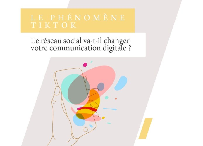 TikTok-agence-destination-influenceurs-social-media-travel-insight