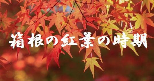 箱根 紅葉 時期