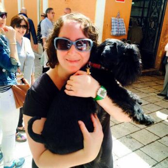 Getting acquainted with an adorable Schnauzer in Split