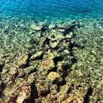 Crystal clear waters of Cikat Bay, Mali Losinj, Croatia