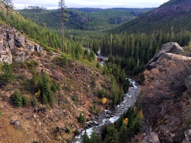 View of a gorge surrounded by pine trees in Sisters, Oregon
