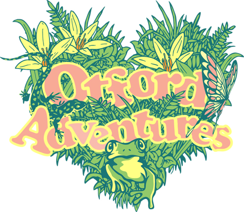 Read more about the article Otford Adventures Project is launched
