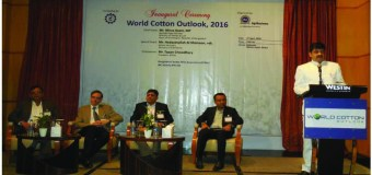 Global Market Drivers and Key Directions for the Cotton Industry
