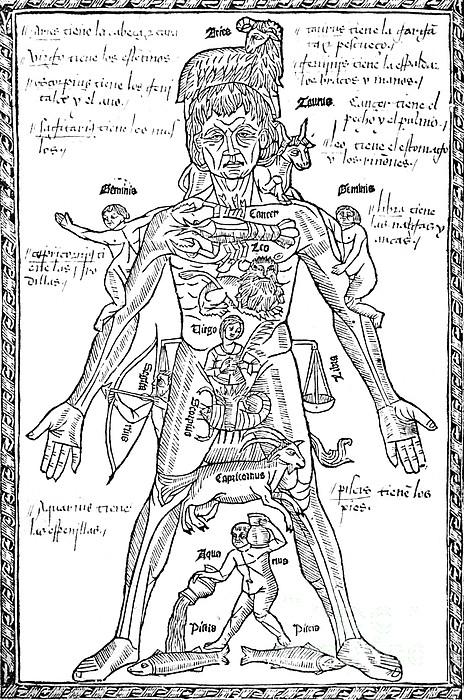 zodiac-body