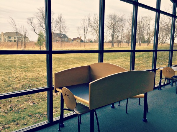 Algonquin Area Library Views