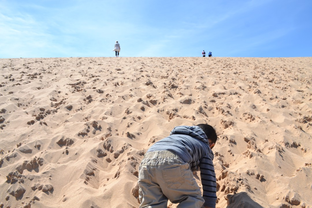 Conquering the Dune Climb with Toddlers at Sleeping Bear Dunes
