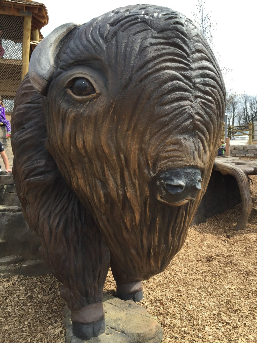 Chicagoland's newest nature playground: Bison's Bluff in Schaumburg