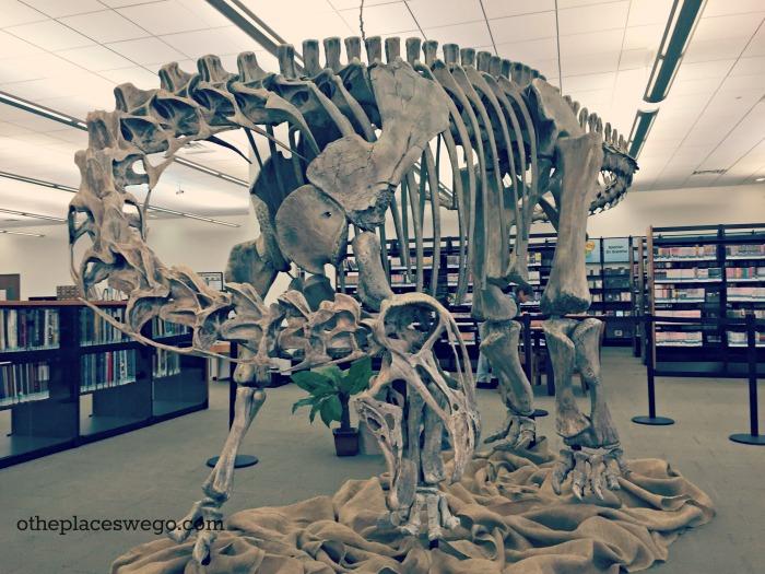 Gail Borden Public Library - Dinosaur Nigersaurus Skeleton