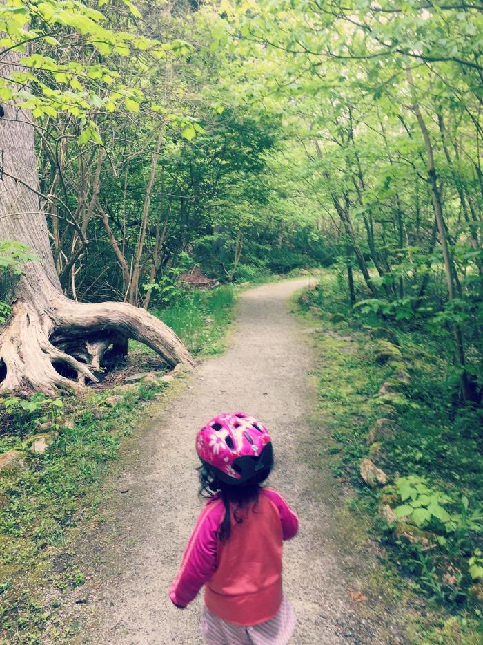 Biking Mackinac Island - Browns Brook Trail