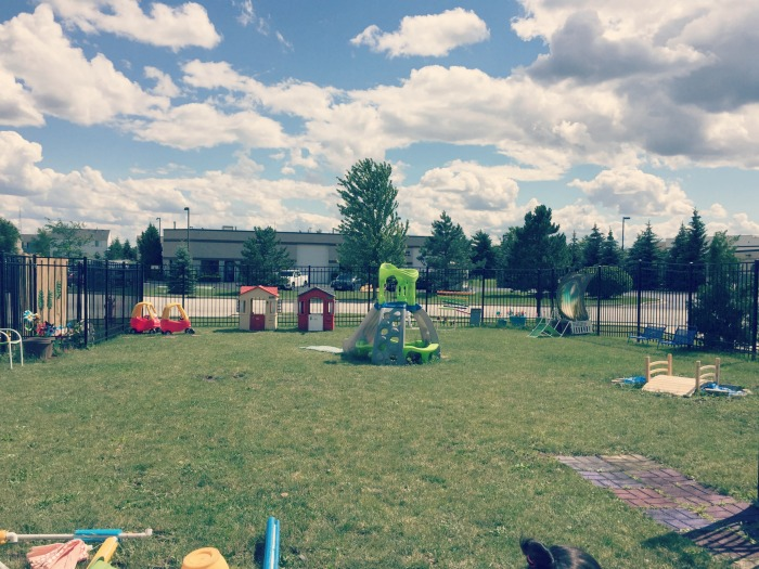 Hippo Campus Volo - Imagination Garden Overview