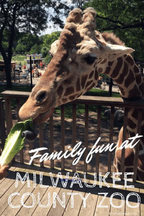Pin this - Family fun at Milwaukee County Zoo