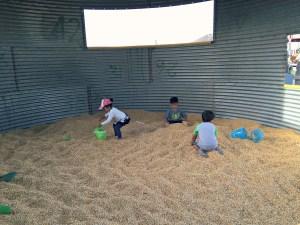 "Family fun at Richardson Adventure Farm | Home of the ""World's Largest Corn Maze"""