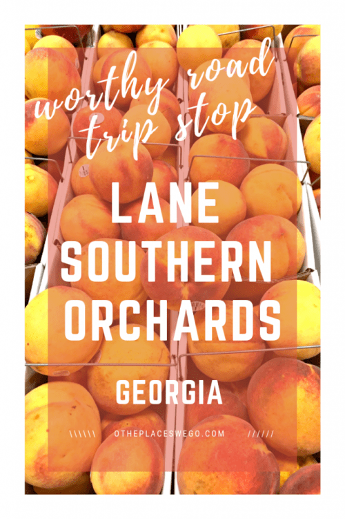A worthwhile stop in Georgia, Lane Southern Orchards has peach tours, a cafe with peach cobbler and homemade ice cream, as well as peaches to buy.