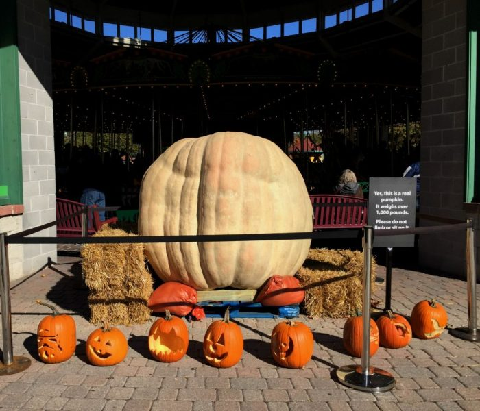 Tips to enjoy Brookfield Zoo's Boo! at the Zoo with the family