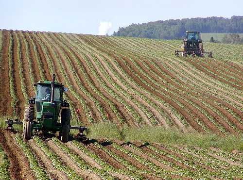 The End of the Farm Bill?