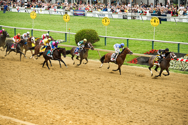 Horse Racing's Shame — And Ours