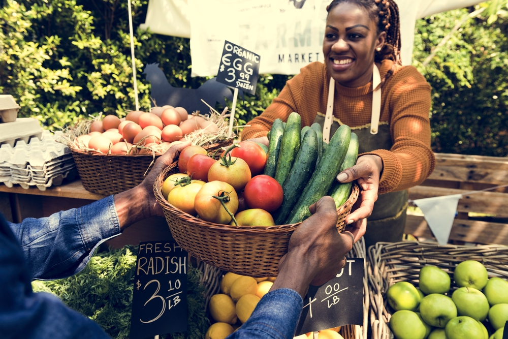 We Have the Money to Fix Our Food System