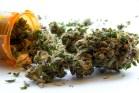medical-marijuana-cannabis
