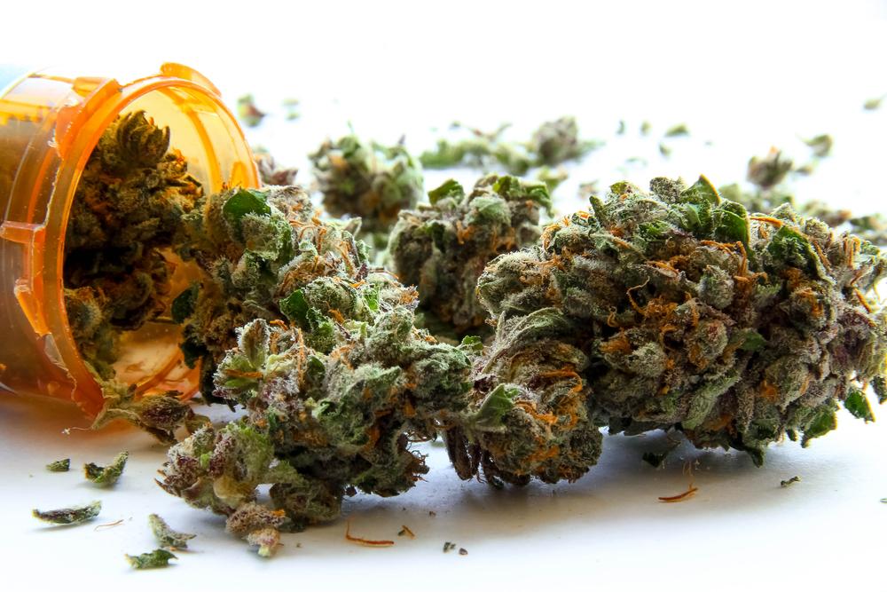 Marijuana Can Help Fight Opioid Abuse