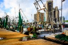 shrimp-boats-texas