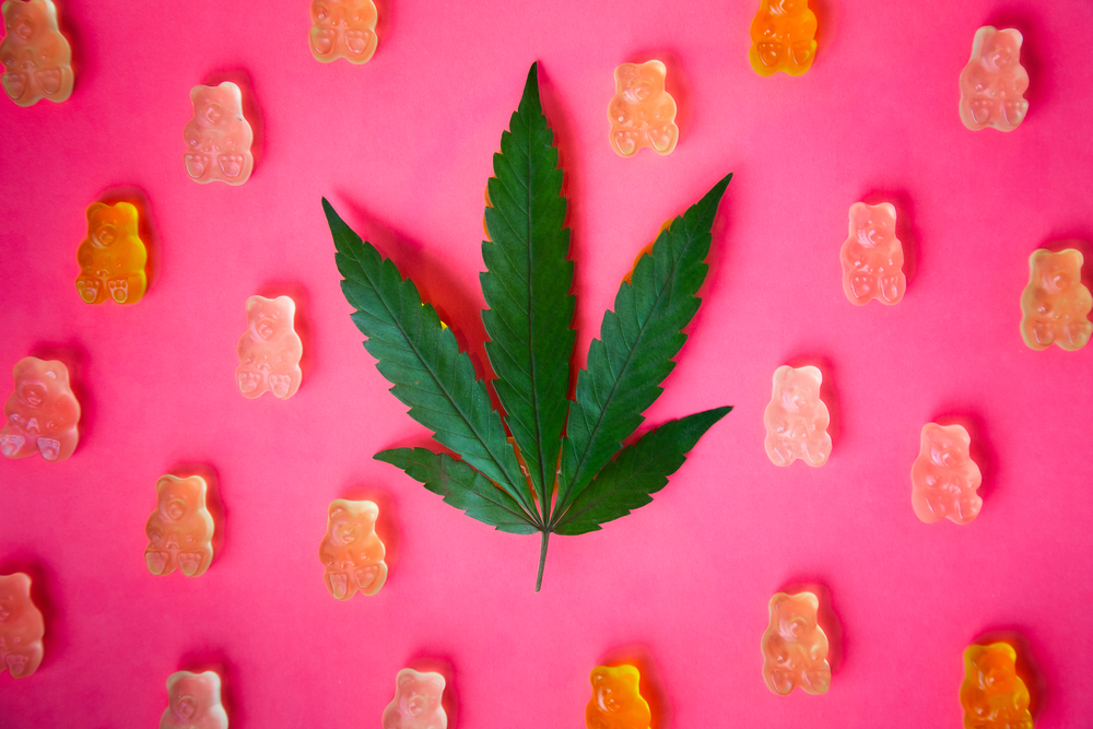 Is Pot Really More Potent These Days? Does It Matter?