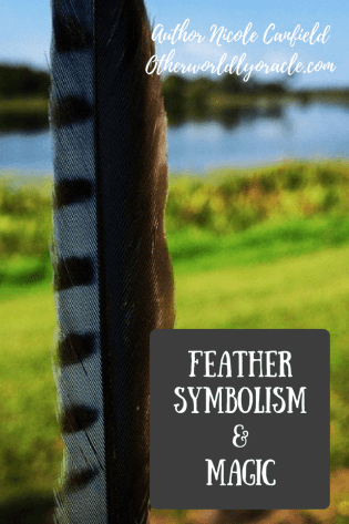 Finding a feather on the ground is a sign from Spirit.