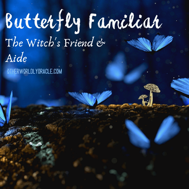 The Butterfly Familiar: The Connection Between Witches and Butterflies
