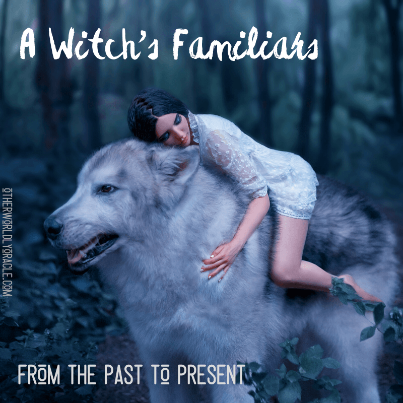 A Witch's Familiars: From the Past to the Present and Common Familiars