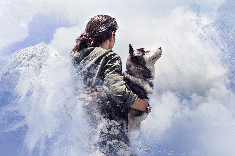 Animal spirit guides can be lifelong totems or temporary messengers.