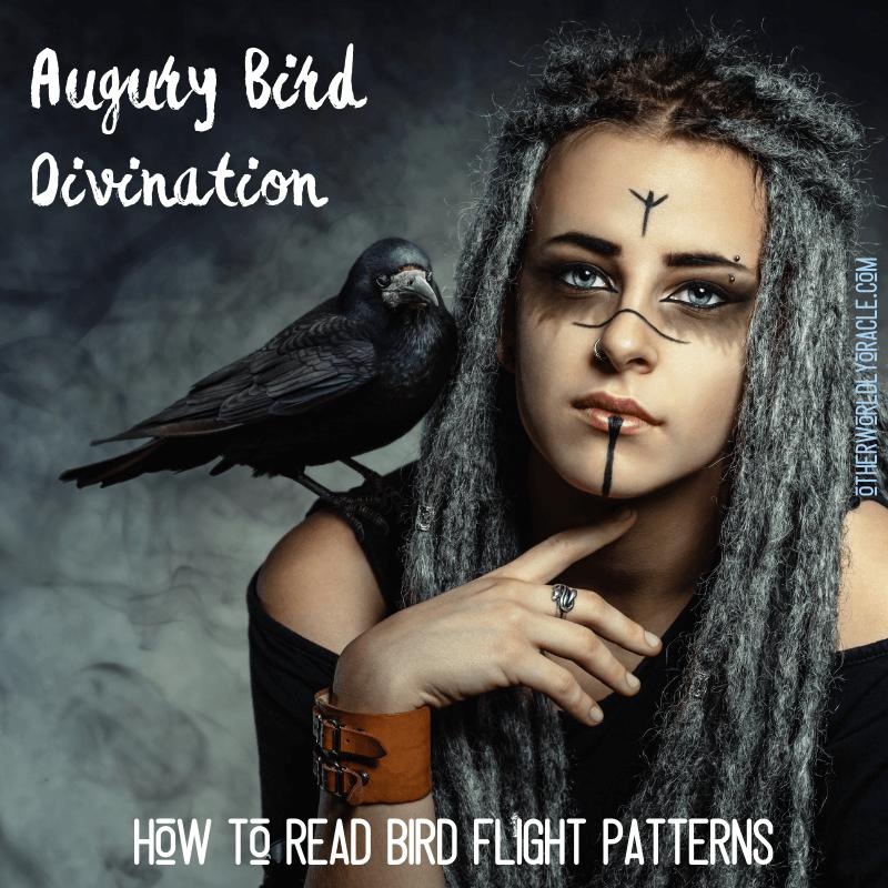 Augury Bird Divination: How to Read Bird Flight Patterns