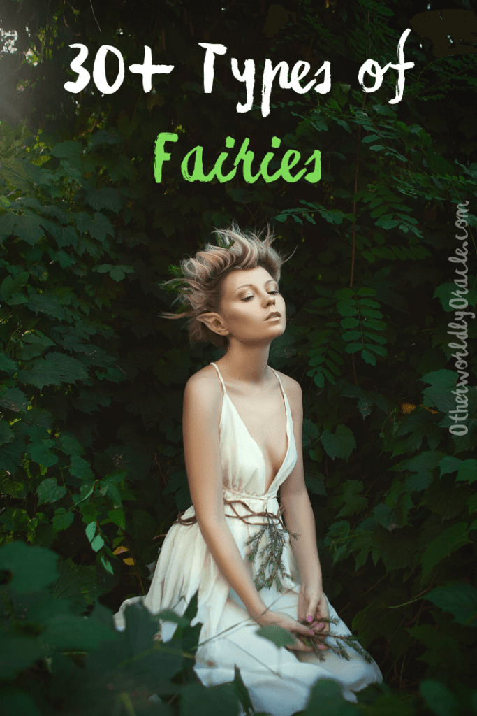 Types of Fairies from Around the World: 30+ Gnomes, Brownies, Giants, Pixies