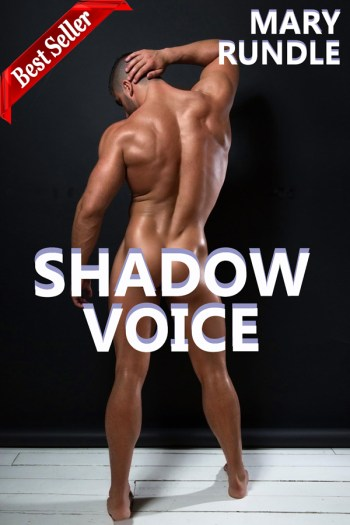 Shadow Voice
