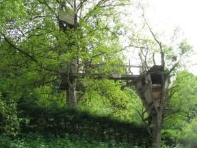 Vor allem nicht, wenn Mitfahrer dabei sind. Hier übrigens coole Baumhäuser!