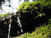 Ein Wasserfall.