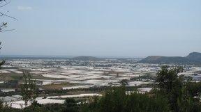 Ein Blick auf das Tal und seine Gewächshäuser.
