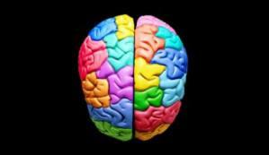 La música ayuda a la neurociencia