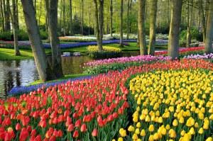 Bienvenidos a Holanda