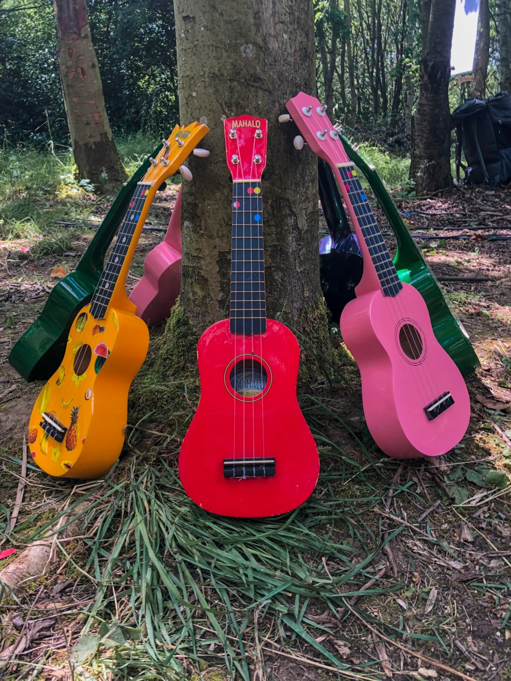 Ukelele chorus at family friendly Timber Festival 2019