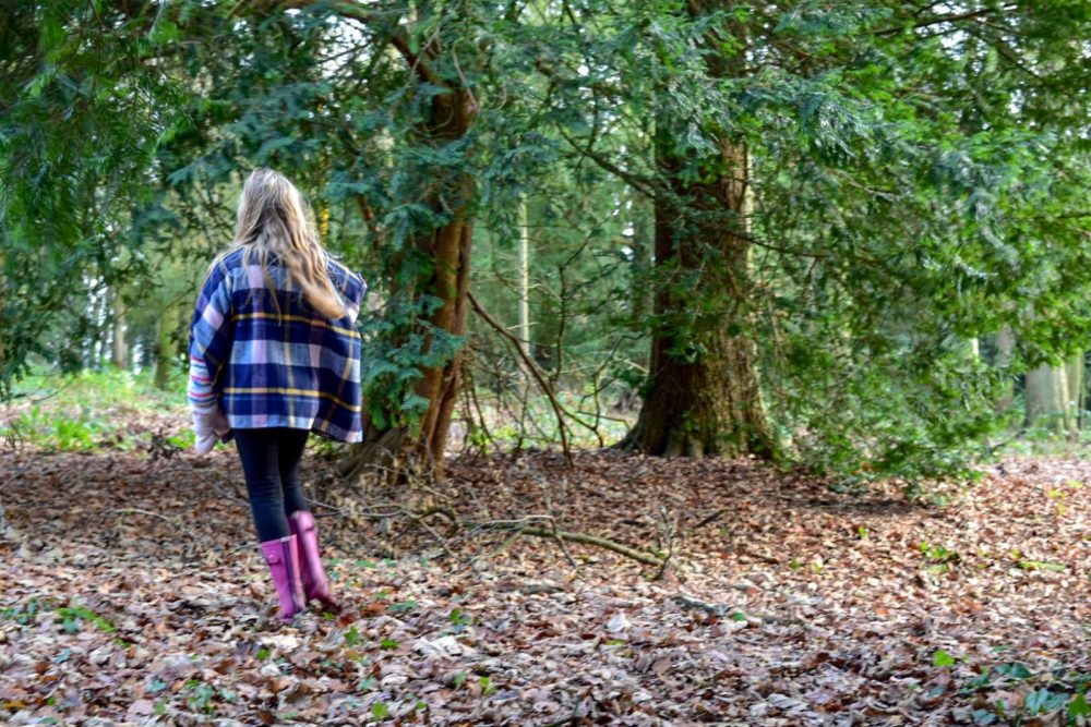 cheap family days out in Staffordshire include a family walk in Keele woods. Outdoor activities near me