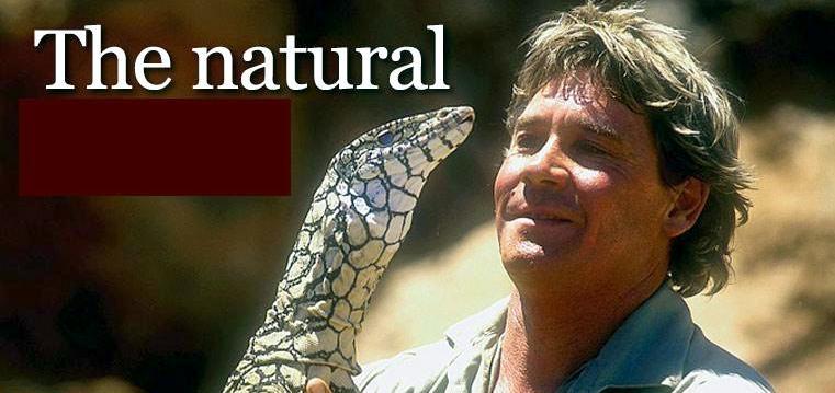Steve Irwin Crikey Quotes