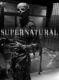 When Will Supernatural Season 13 Be on Netflix? Netflix Release Date?