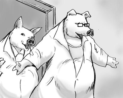 豚の博士と助手