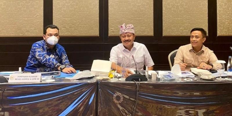 Pembentukan Tim MotoGP Indonesia Dapatkan Dukungan dari DPR RI