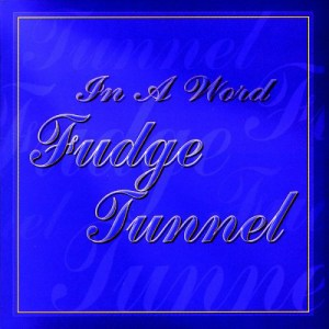 FUDOGE_TUNNEL_In_a_Word