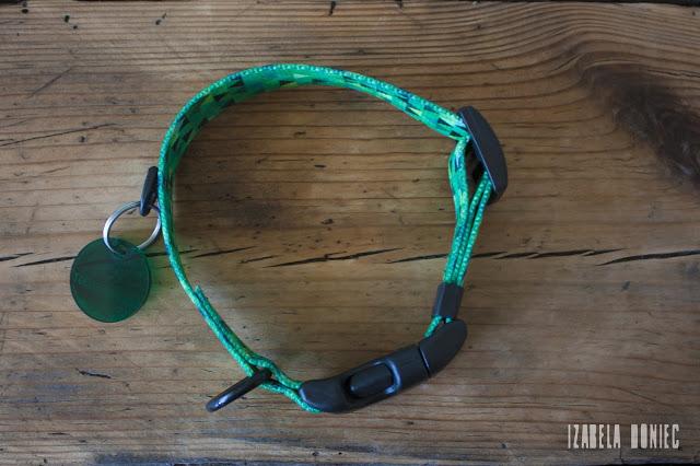 warsawdog otojanka recenzja obroża shine in green