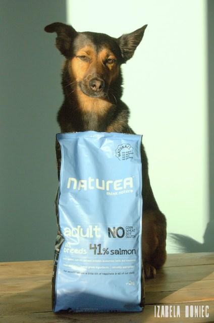 naturea karma otojanka recenzja dla kota psa