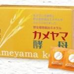 カメヤマ酵母 公式通販の定期申し込みページへのリンク画像