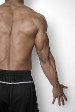 姿勢がピンと伸びた筋肉質の男性