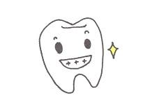 美しく輝く白い歯