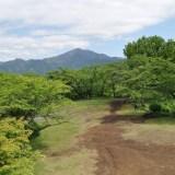 半日で楽しめる山 秦野 高取山